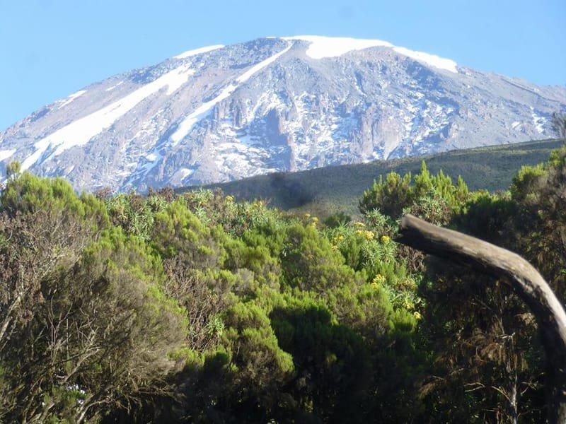 KILIMANJARO 5895 CLIMB 2020, EAST AFRICA, TANZANIA