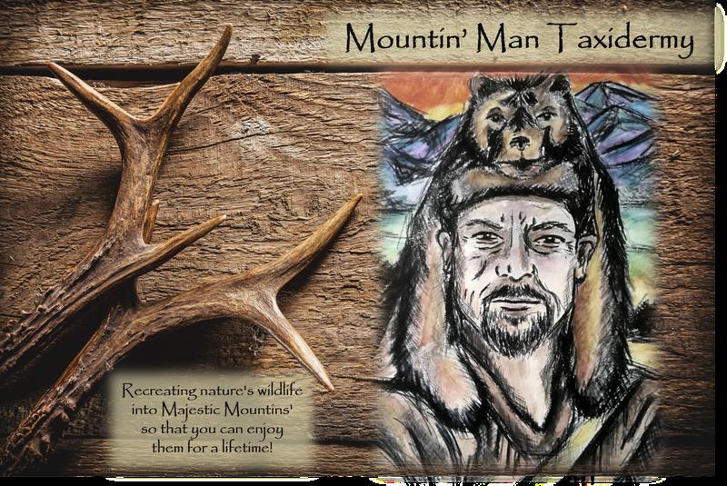 Mountin' Man Taxidermy