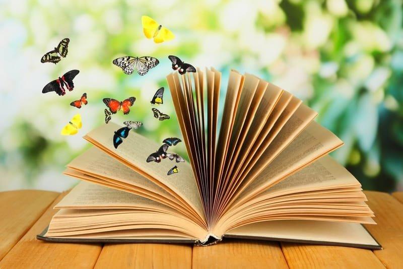 Quels sont les meilleurs romans étrangers : nos choix à dévorer