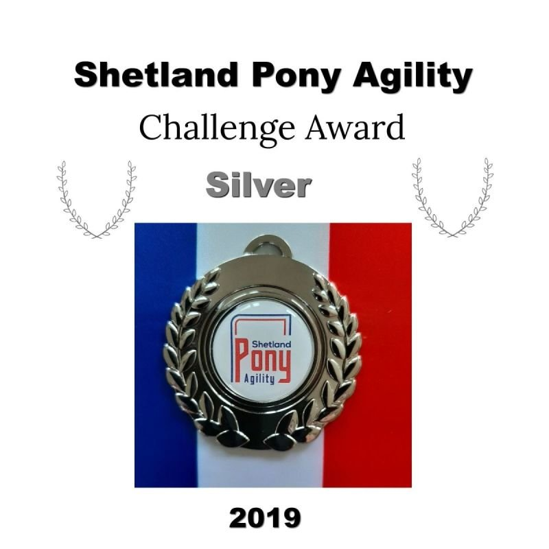 AgilityAbility Achievement Award Silver