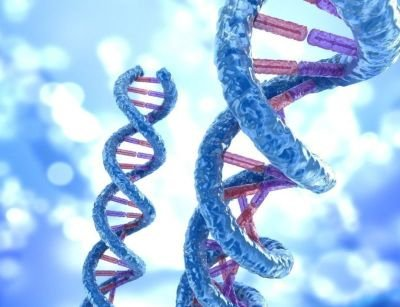 About - Tucson DNA Cancer Testing