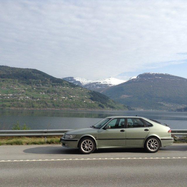Stilikon i läkker Norsk natur