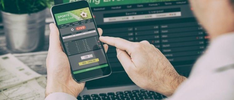 Factors To Assess Before Picking A Sports Betting Service Provider