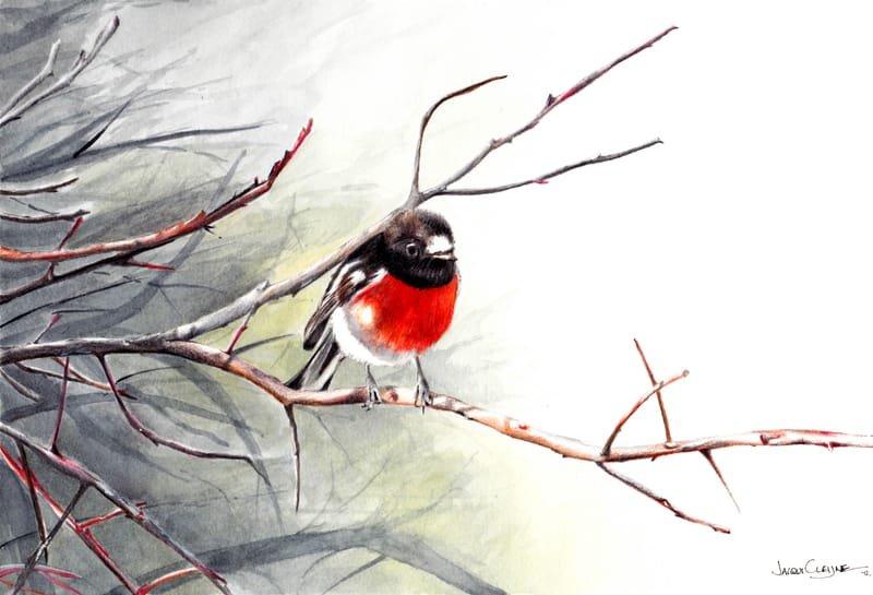 Scarlet Robin (Red Robin)