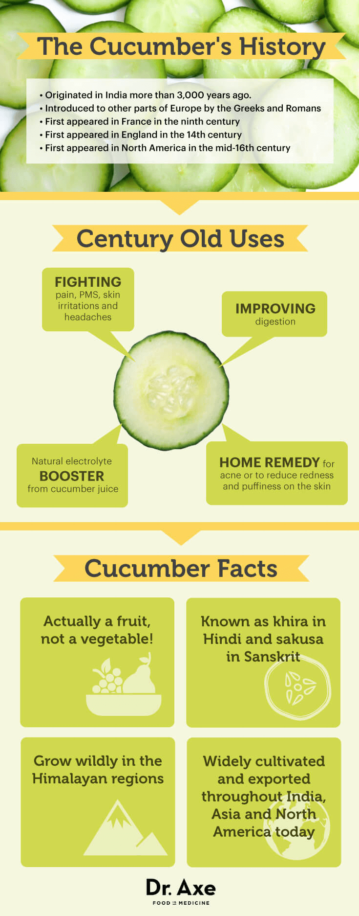 Cucumber history - Dr. Axe