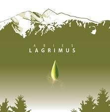 Abies Lagrimus