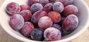 Plum-pieces