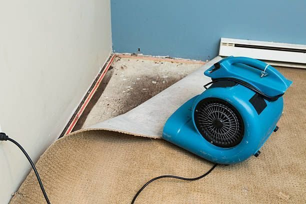 Importance Of Hiring The Best Water Damage Service Provider