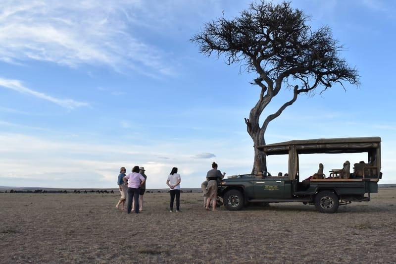 Custom Safari Vehicles