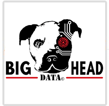 Big Head Data