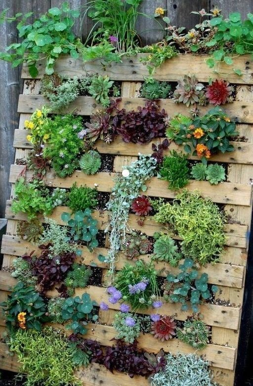 DIY Vertical Gardens