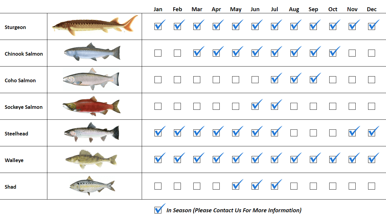Columbia River Fishing Guide Species Fishing Calendar