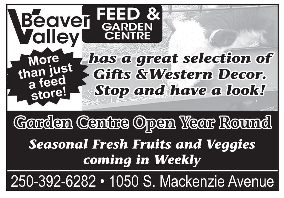 Please take a moment to visit our wonderful sponsors, Beaver Valley Feeds.  Click here.