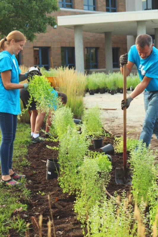 Thrive – Using Gardening To Change Lives