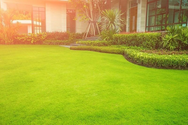 Crucial Tips to Factor in When Looking for a Landscaping Company