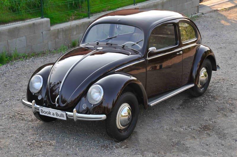 Der Brezel-Käfer
