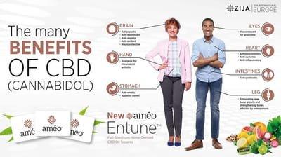 מדבקות CBD