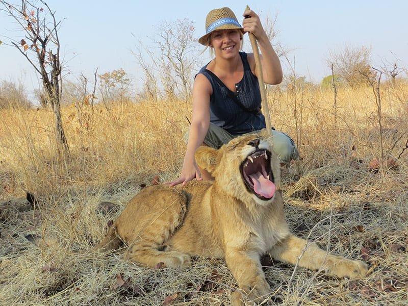Lion Park - Big6 Safaris