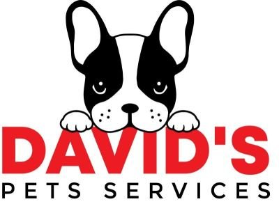 DAVID'S PET TAXI AND DOG WALKING