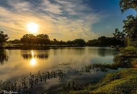 Morning on Legacy Lake