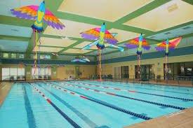 indoor pool to swim lanes