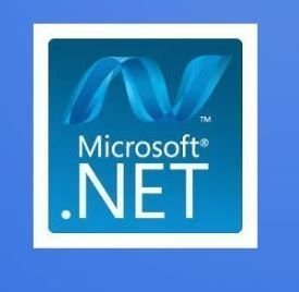 Microsoft .NET Development