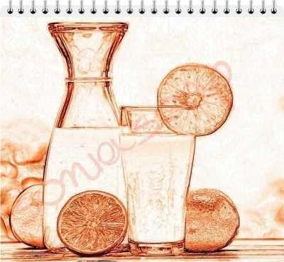 Γάλα Γαϊδούρας & Φυσικός Χυμός Πορτοκαλιού