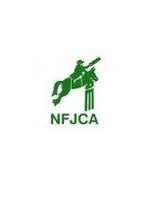 New Forest Cricket League