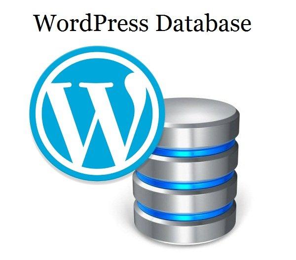Reasons to Seek Best Teaching for WordPress Sites and SEO