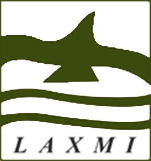 Laxmi Computers India