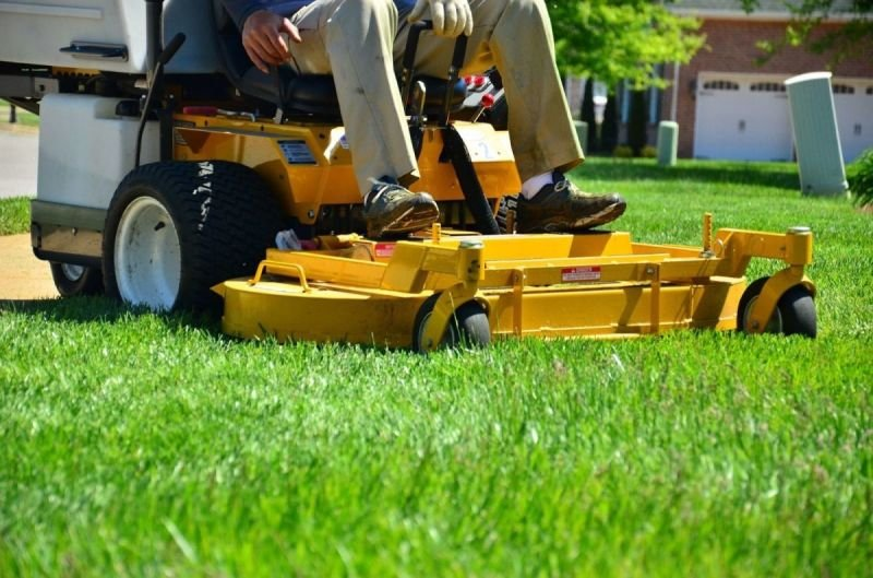 Yard Mowing
