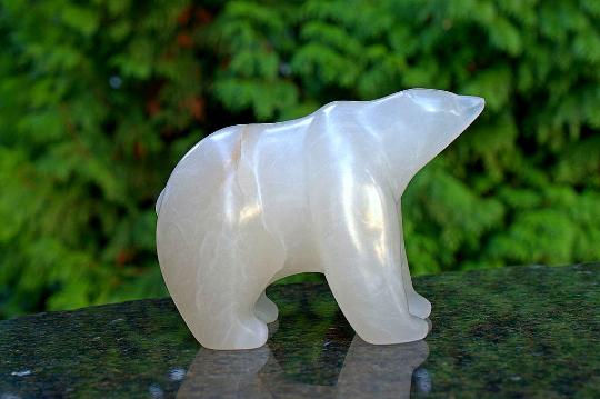 just a baby Polar bear