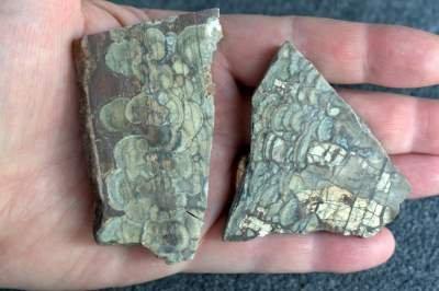 Mushroom Rhyolite slabs