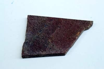 Dinosaur bone stone slab