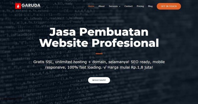WEB DESIGN & SEO PROFESIONAL