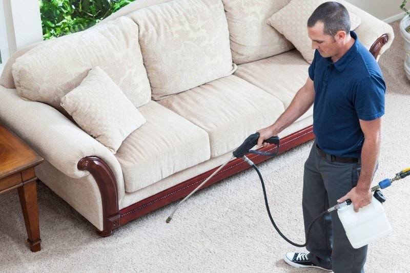A Guide to Choosing a Carpet Cleaning Service Provider