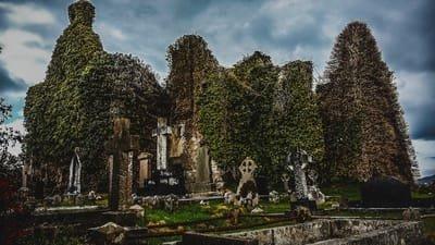 Cremation 3