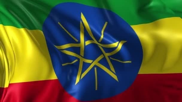 We are looking for a partner for the selection of working personnel in the territory of Ethiopia