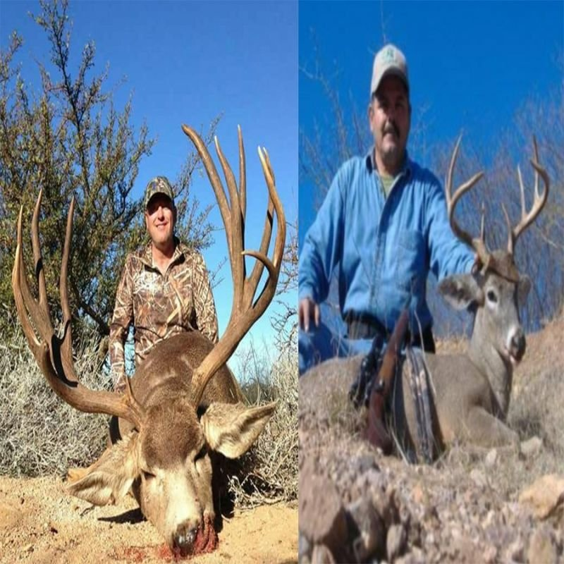 Desert Mule Deer & Desert Coues Deer Combo Hunting Package