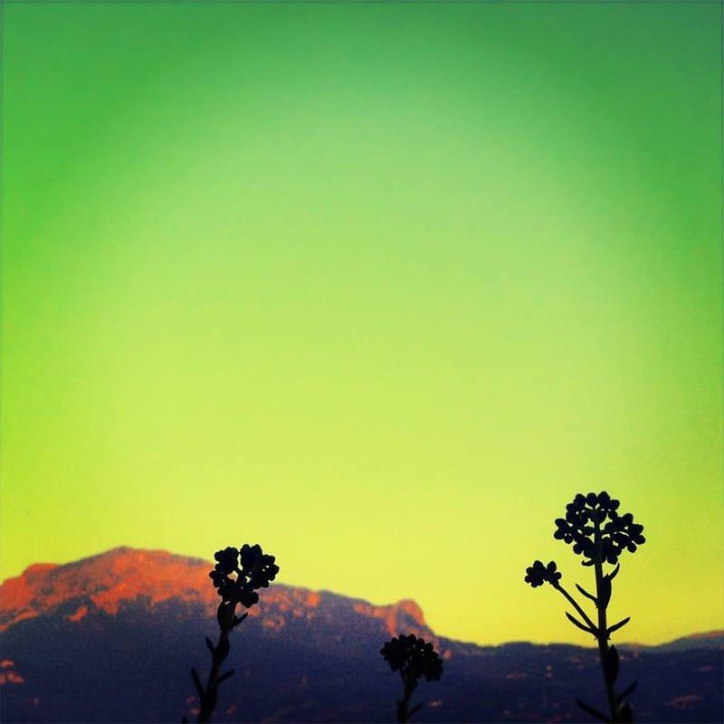écrin naturel #25 coloring life / Vercors