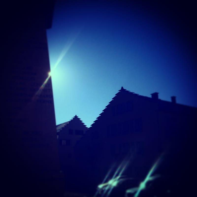 bleu du Vercors #10