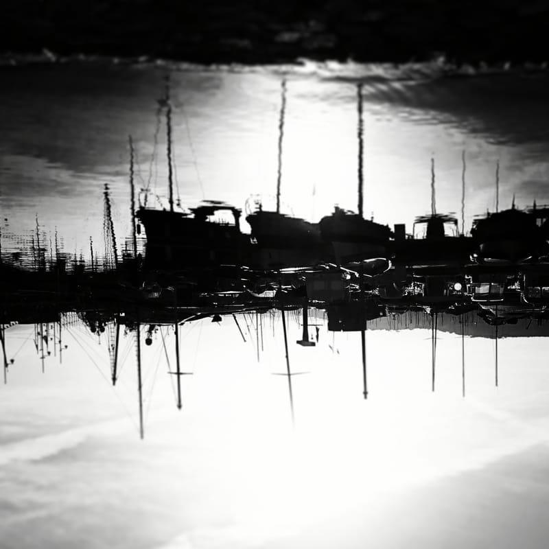 noir et blanc #22