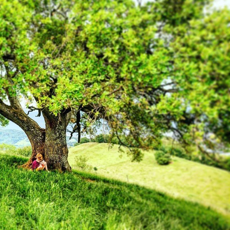 auprès de mon arbre #18