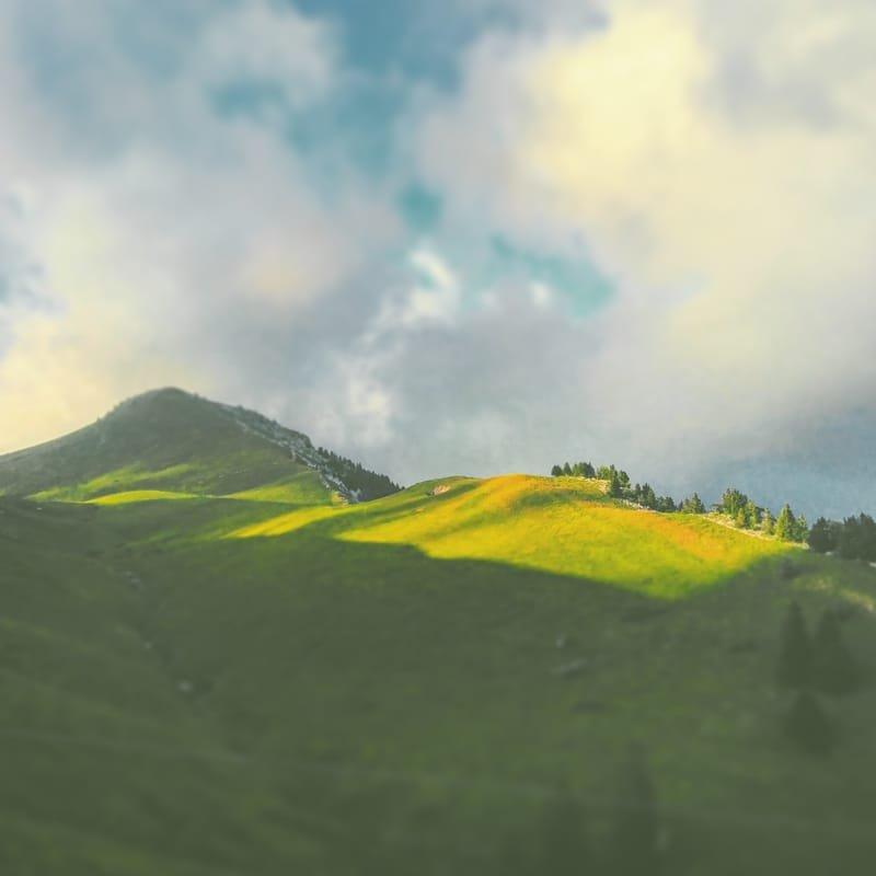 écrin naturel #33 charmant som / Chartreuse
