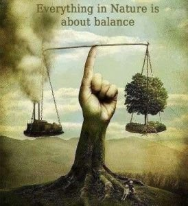 everything-in-nature-is-about-balance