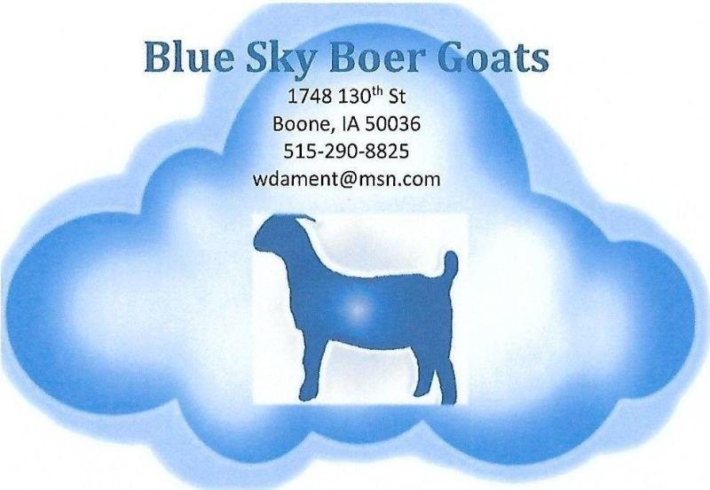 Blue Sky Boer Goats