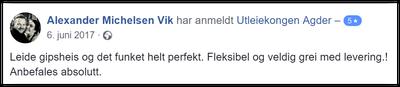 Alexander Michelsen Vik
