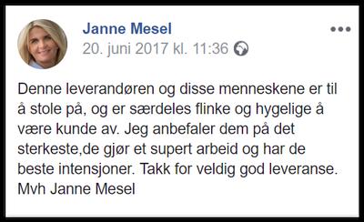 Janne Mesel