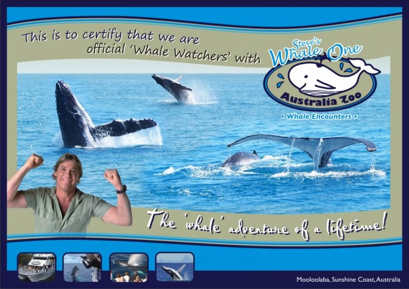 Certificate - Whale One - Australia Zoo