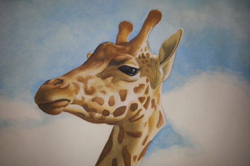 Erin's Giraffe